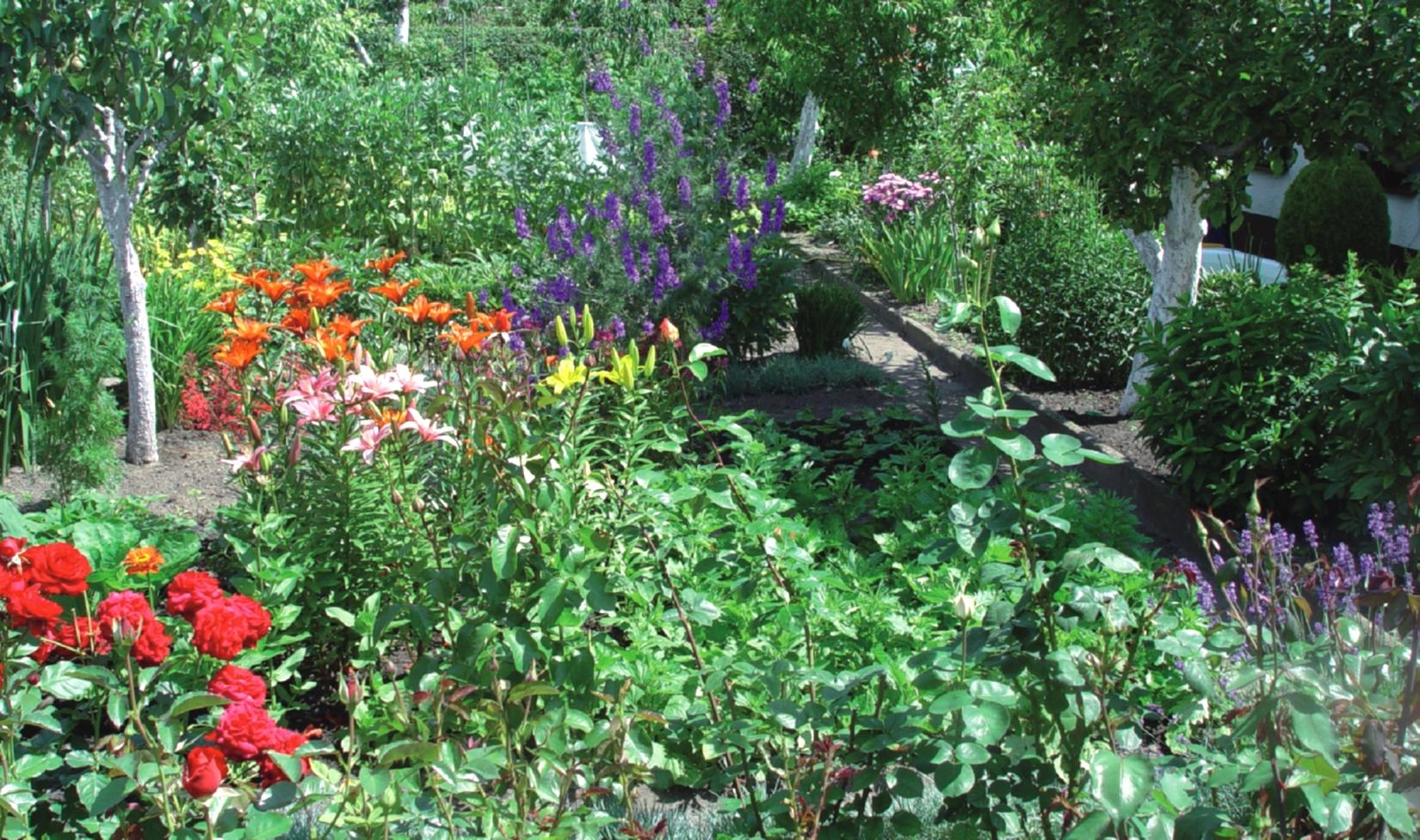 Garten und Gabionen März